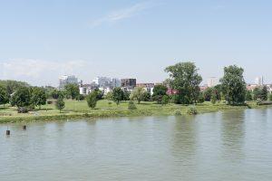 Der Garten der Zwei Ufer von der Fußgängerbrücke über den Rhein aus gesehen » ©David Betzinger